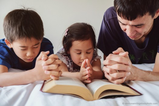 Vibrant Christian Households