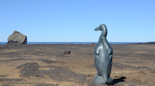 Great Auk and Human Stewardship Failure