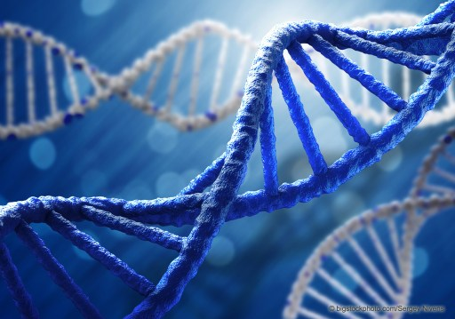 Your DNA Code