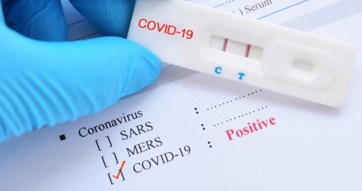 Covid-19 : zéro cas détecté depuis l'apparition du virus sur le territoire
