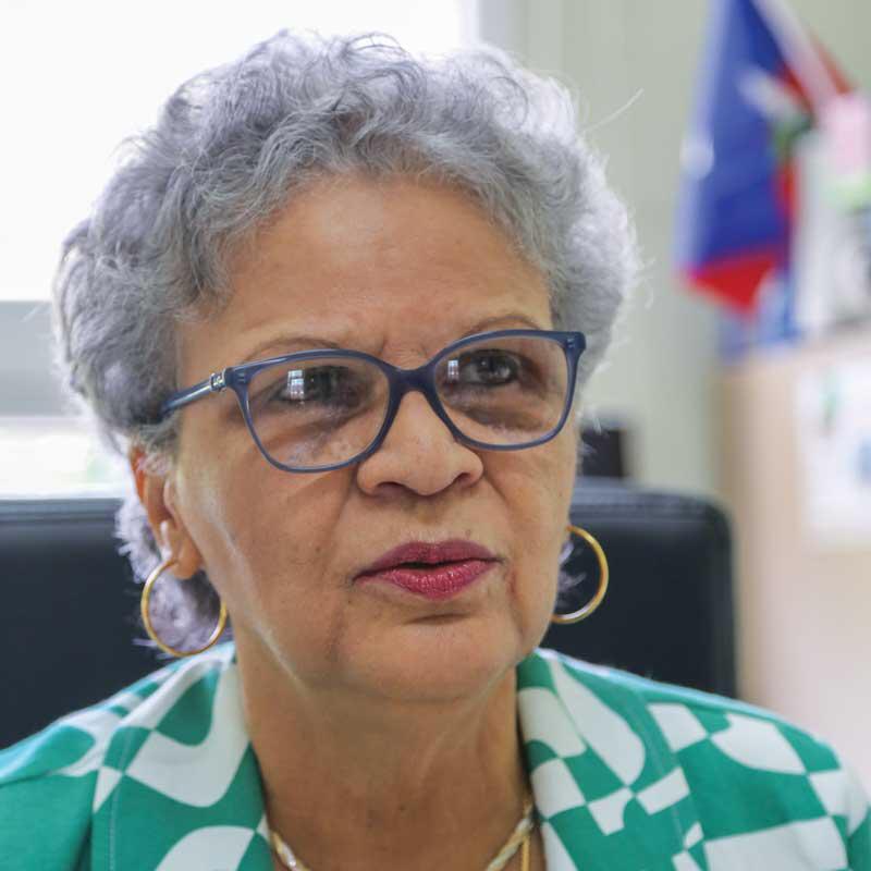 Michèle Duvivier Pierre-Louis nouvelle Présidente du Centre d'art