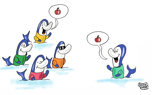 Activitats dofins de colors