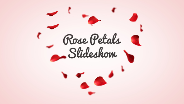 Rose Petal Slideshow after effects template