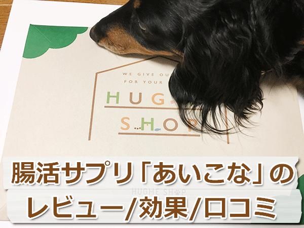 犬の腸活サプリ「あいこな」をレビュー【効果・口コミ】