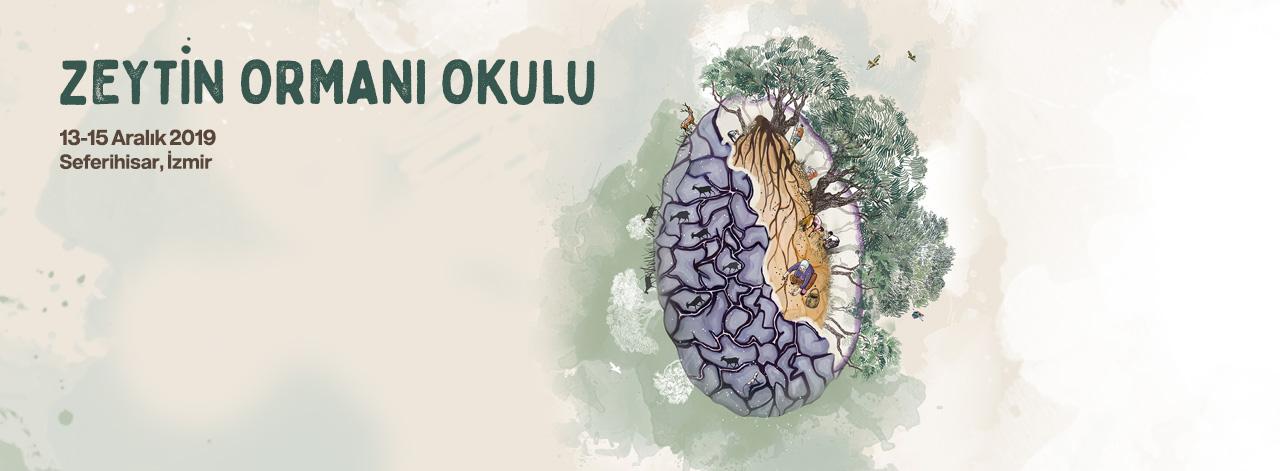 Zeytin Ormanı Okulu