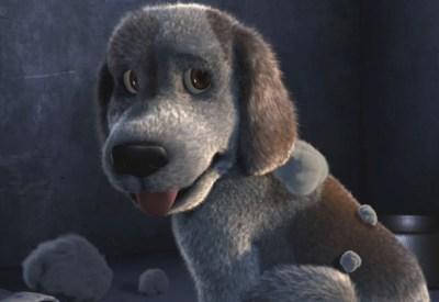 Videos | The Dog Advertiser