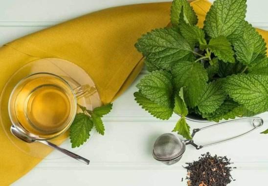 Melisa Çayının Faydaları