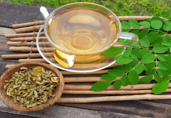 Moringa Çayı Nedir, Moringa Çayı Faydaları Nelerdir?