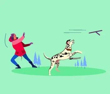 7.Bonus Advanced Dog Training