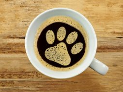 cropped-paw-print-coffee1.jpg