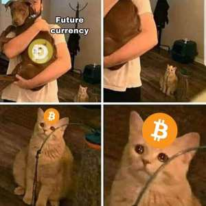 dogecoin future currency