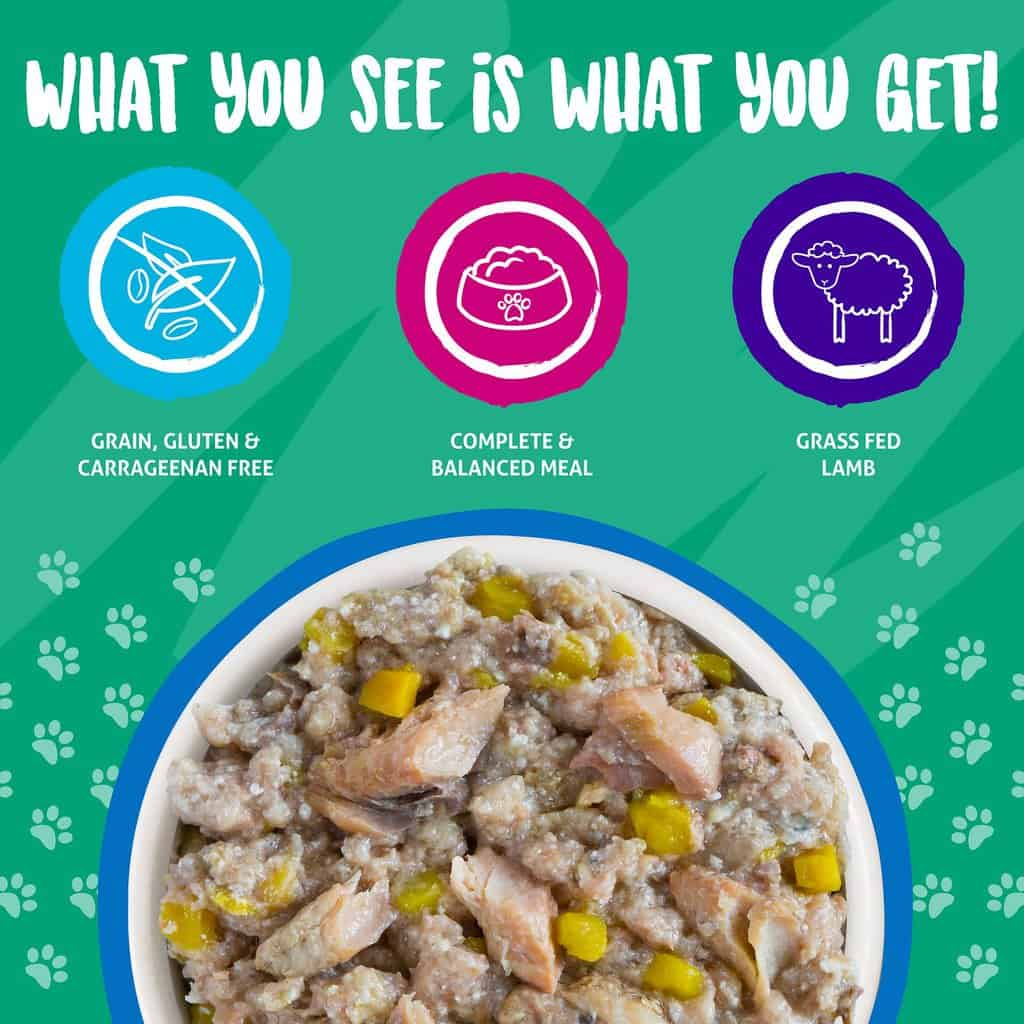Weruva Dog Food Review 2021: Treat Your Pet To A Lil' Luxury! 21