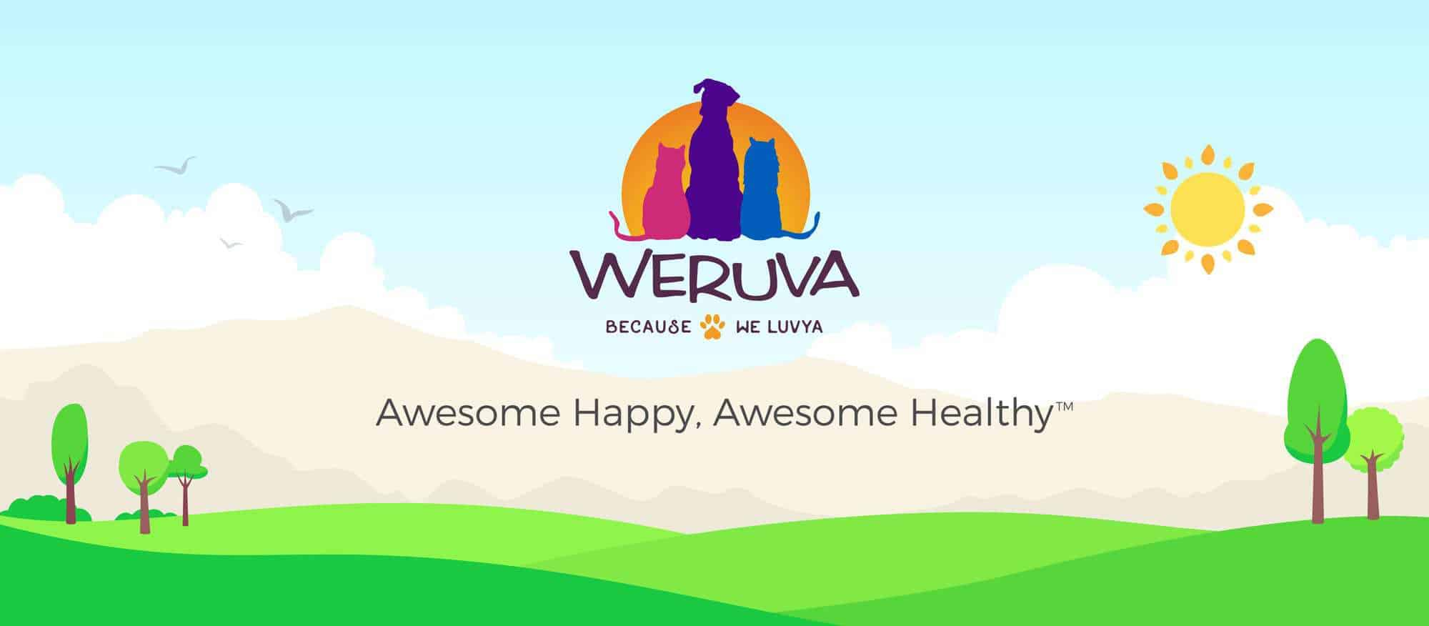 Weruva Dog Food Review 2021: Treat Your Pet To A Lil' Luxury! 24