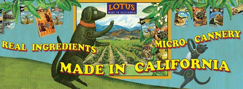Lotus Dog Food: 2021 Review, Recalls & Coupons 3