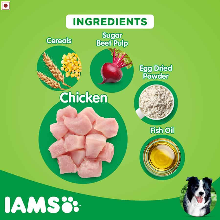 Iams Dog Food: 2021 Review, Recalls & Coupons 13