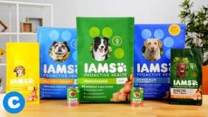 Iams Dog Food : 2020 Review, Recalls & Coupons 14