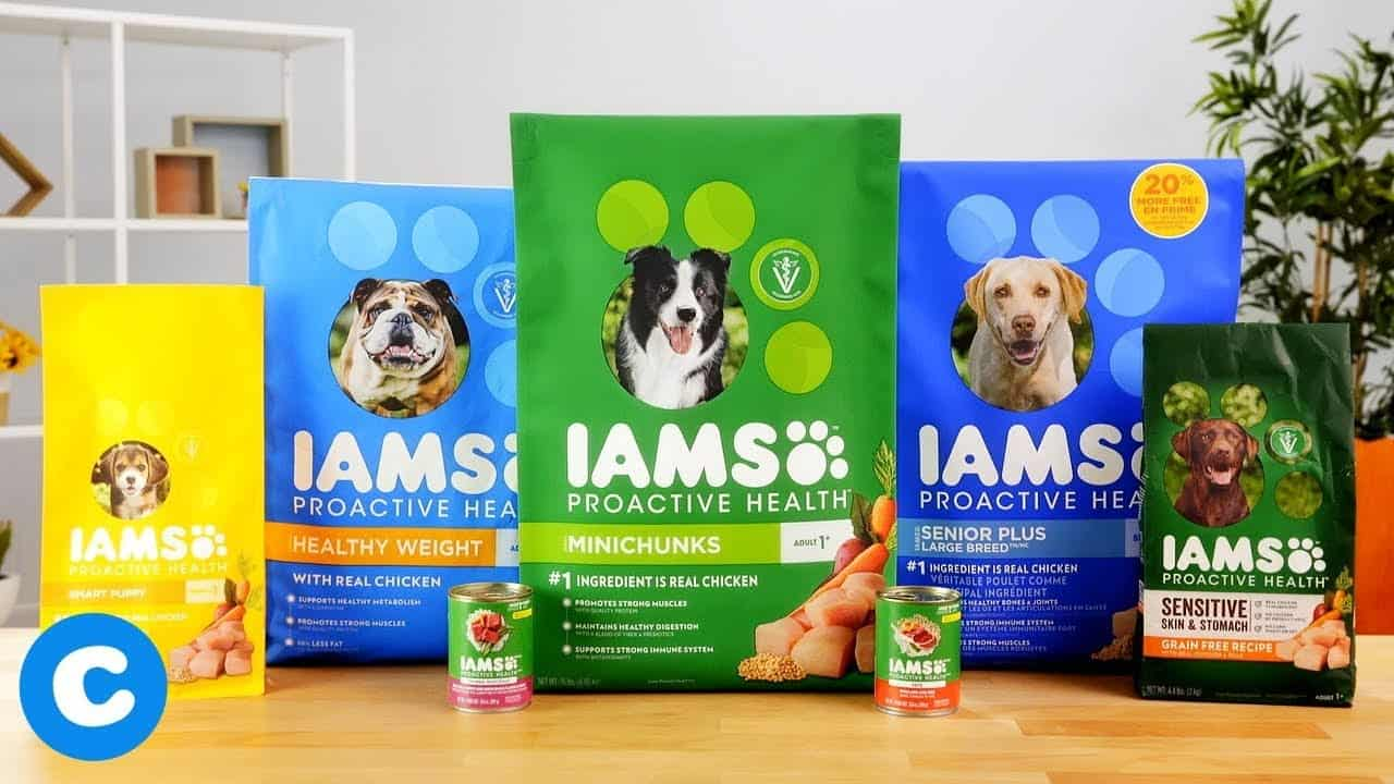 Iams Dog Food: 2021 Review, Recalls & Coupons 14