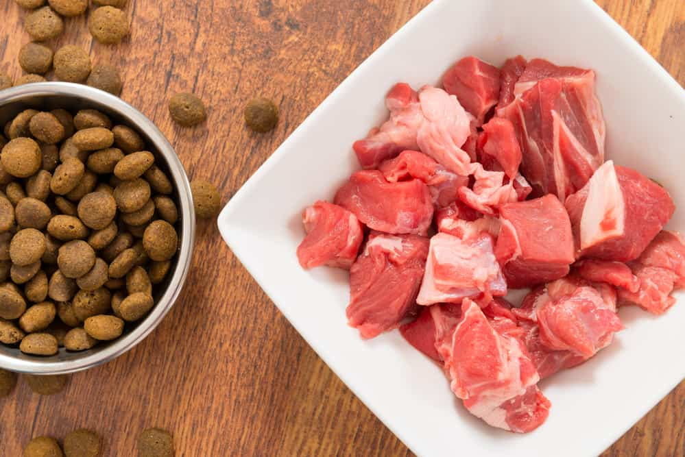 The Skinny on Fresh Raw Dog Food 1