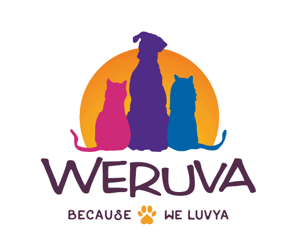 Weruva Dog Food Review 2021: Treat Your Pet To A Lil' Luxury! 1