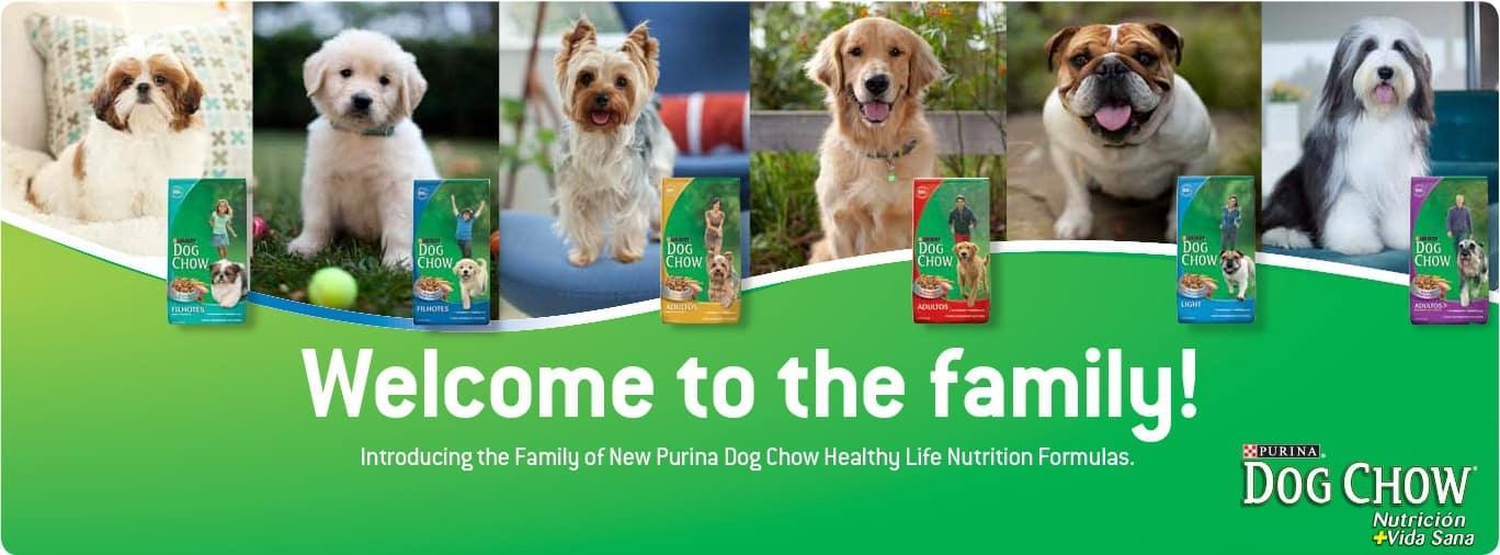 Purina Dog Chow Dog Food: 2020 Review, Recalls & Coupons 19