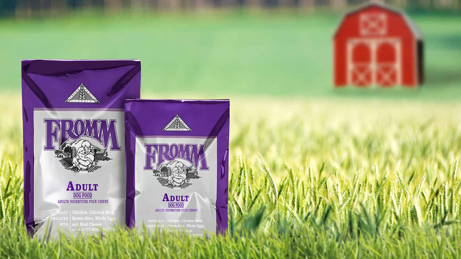 Fromm Dog Food Review 2020: Recalls, History and More! 14