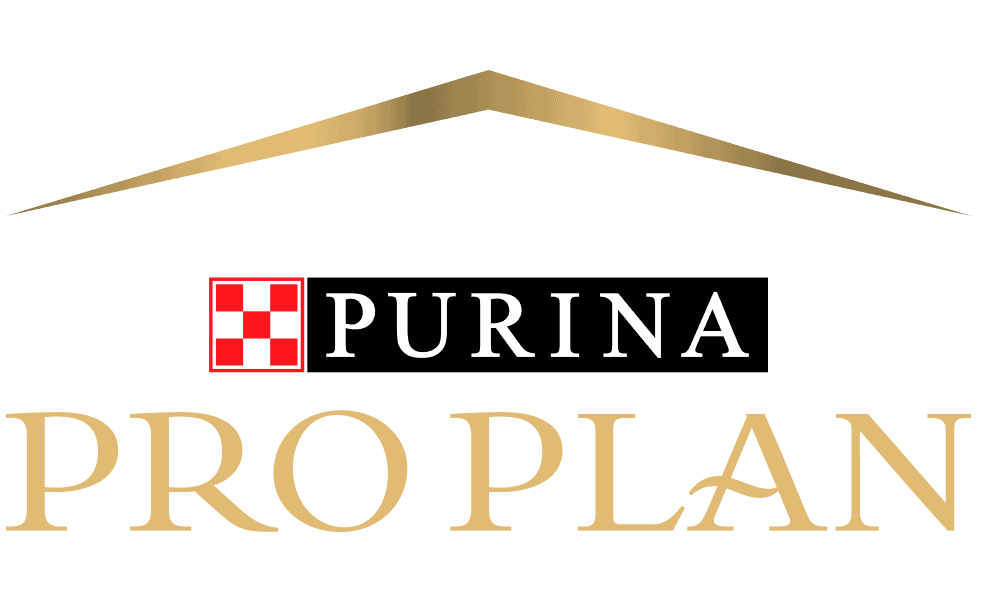 2021 Purina Pro Plan Dog Food: Advanced Nutrition for Dogs 1