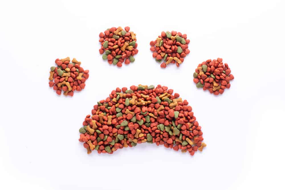 Different Types of Dog Food Available to Feed your Dog 1