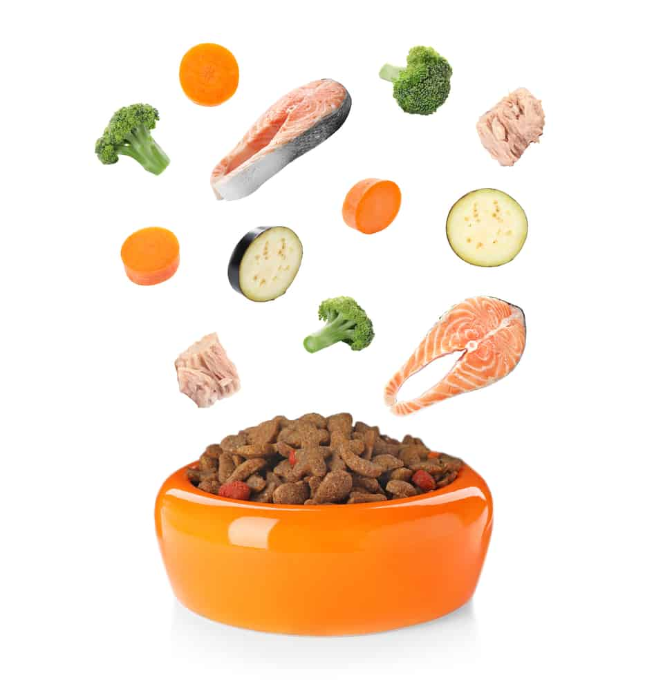 The State of Pet Food Today 2021 5