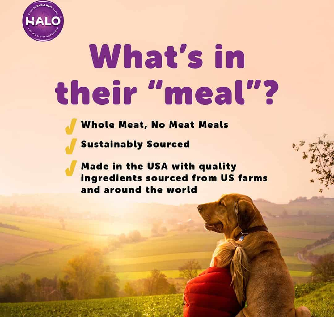Halo Dog Food: 2021 Review, Recalls & Coupons 20