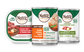 Nutro Dog Food: 2021 Review, Recalls & Coupons 25