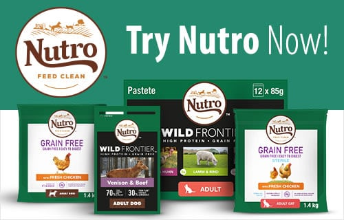 Nutro Dog Food: 2021 Review, Recalls & Coupons 24