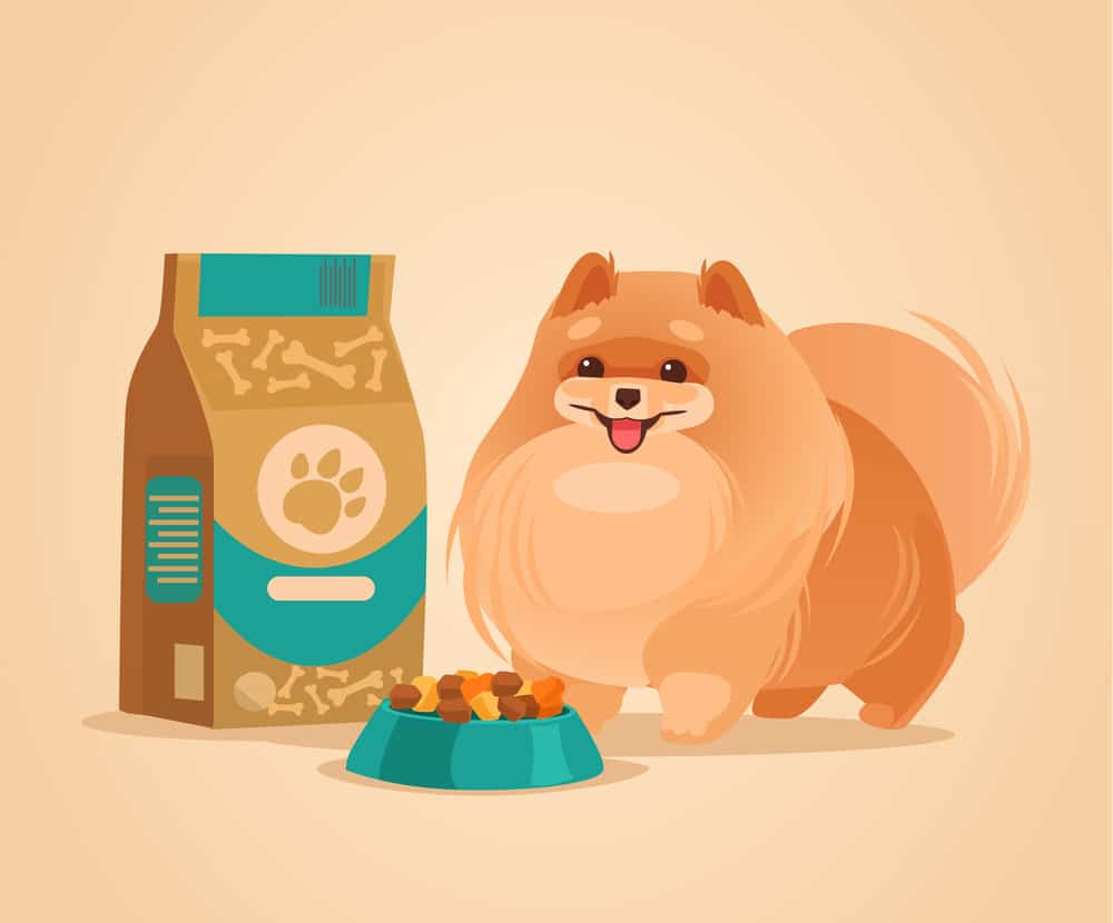 Best In-depth Guide to Reading Dog Food Labels 8