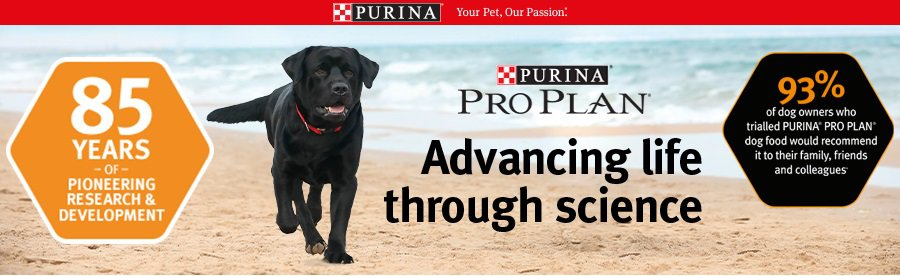 2021 Purina Pro Plan Dog Food: Advanced Nutrition for Dogs 14