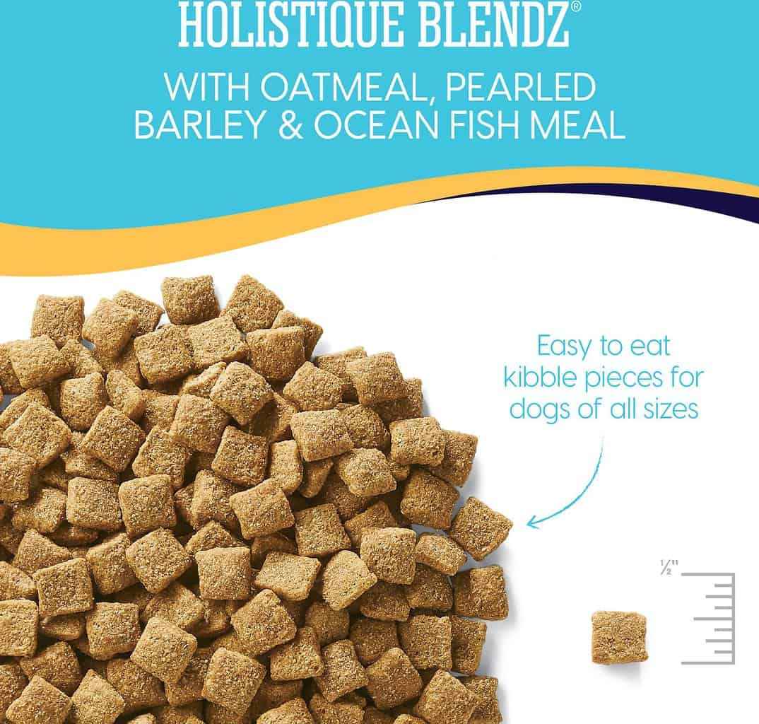 Solid Gold Dog Food: 2021 Review, Recalls & Coupons 18