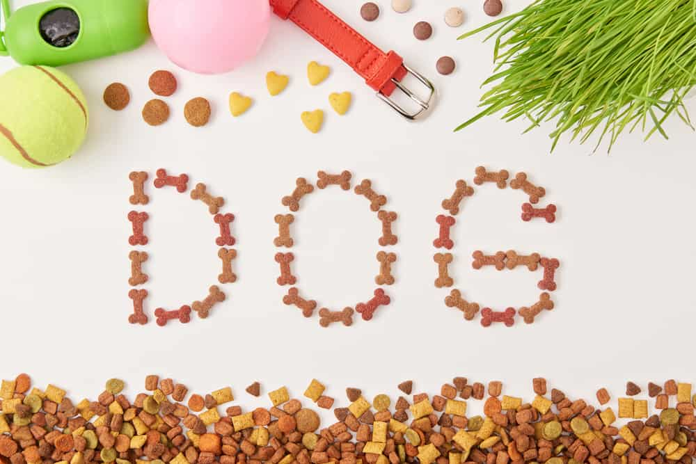 Sportmix Dog Food Review 2020: Best Food for Sporting Dogs? 7