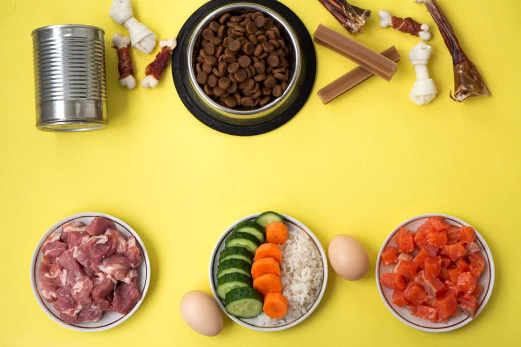 9 Best Chicken Free Dog Food: [year] Your Guide to Foods Without Chicken 1
