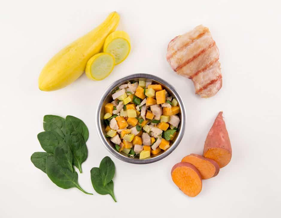 7 Best & Healthiest Human Grade Dog Foods in 2021 21