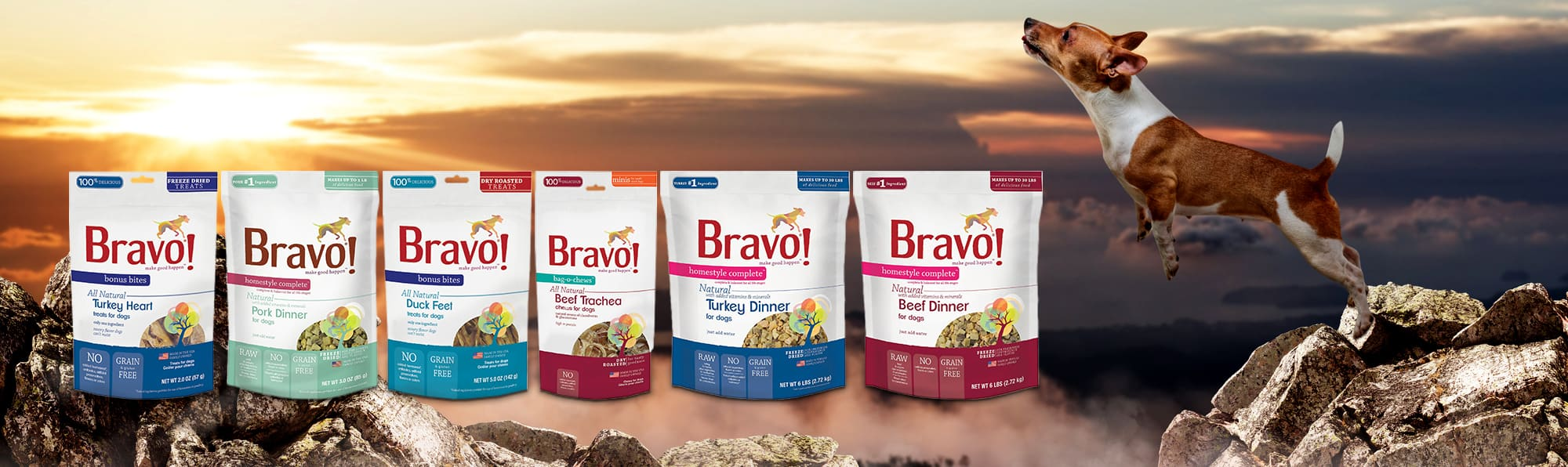 Bravo dog food reviews
