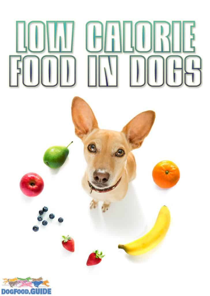 Low Calorie Food in Dogs