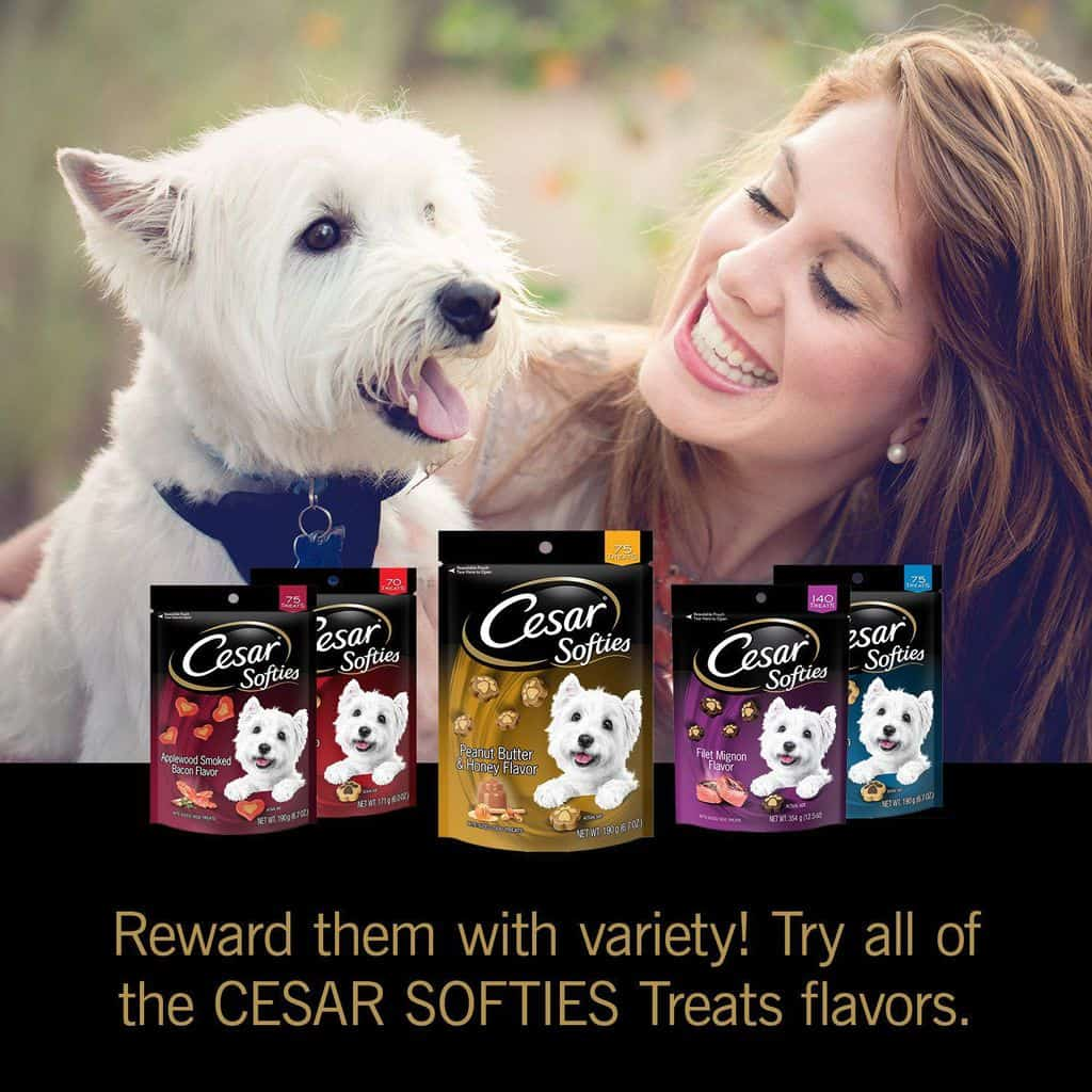 2020 Cesar Dog Food Review: Tasty Meals For Your Little Buddy 22