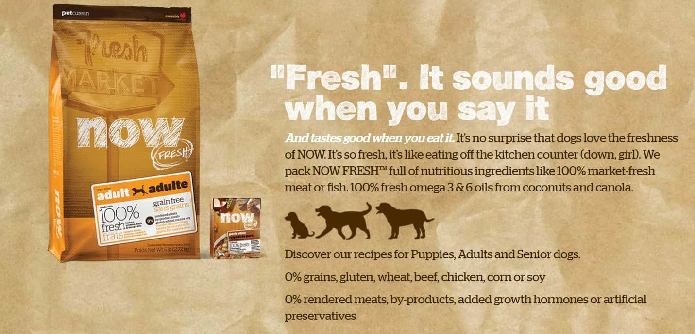 now fresh dog food