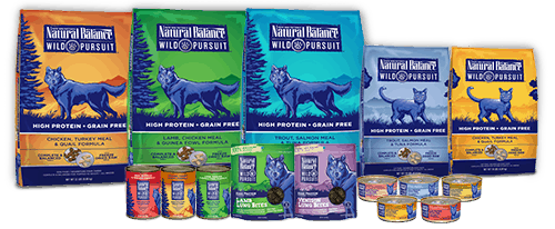 Natural Balance Dog Food Review 2021: Best High Quality Pet Food? 28