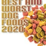 10 Best Dog Foods in 2020 plus our Picks for the Worst