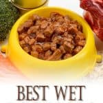 Best Wet Dog Foods For 2020: Top Brands For Puppies, Adults & Seniors