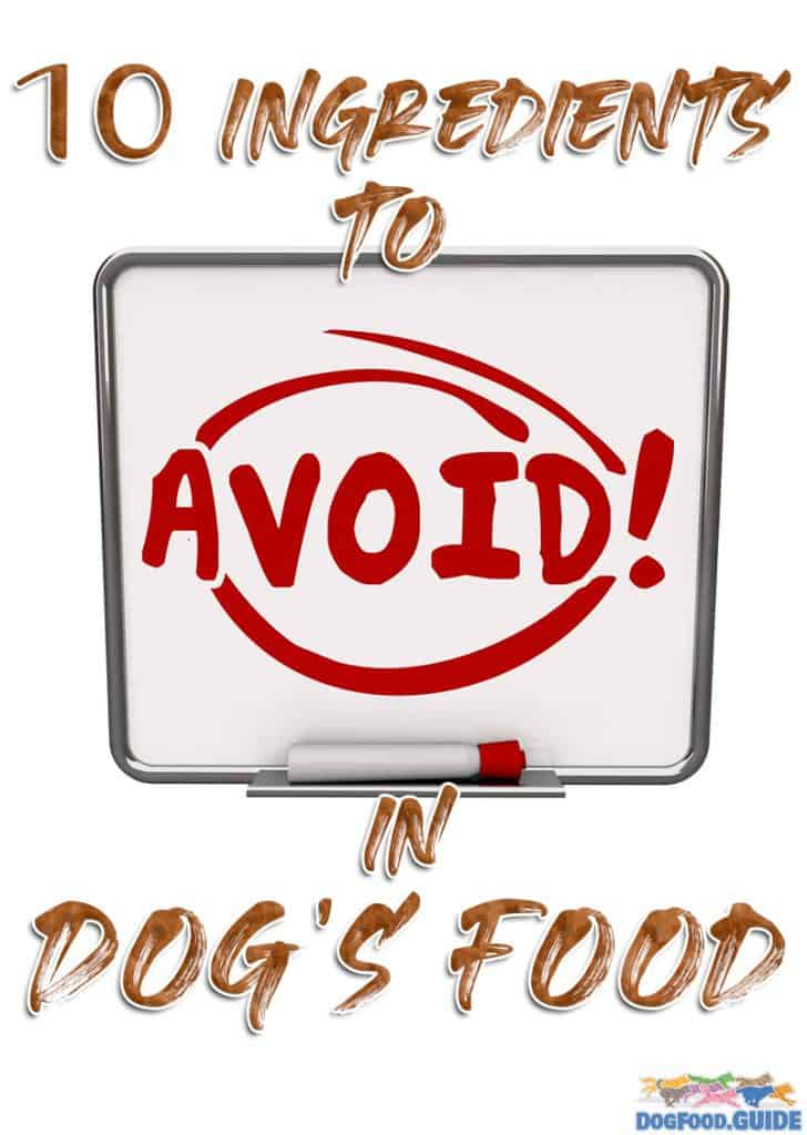 10 Ingredients to avoid in dog's food
