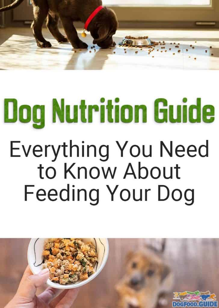 Our Guide - Dog Nutrition Guide
