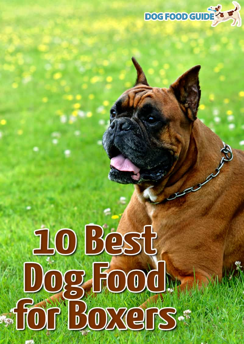 10 Best Dog Food For Boxers 2021
