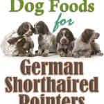 10 Best (Healthiest) Dog Foods for German Shorthaired Pointers in 2021