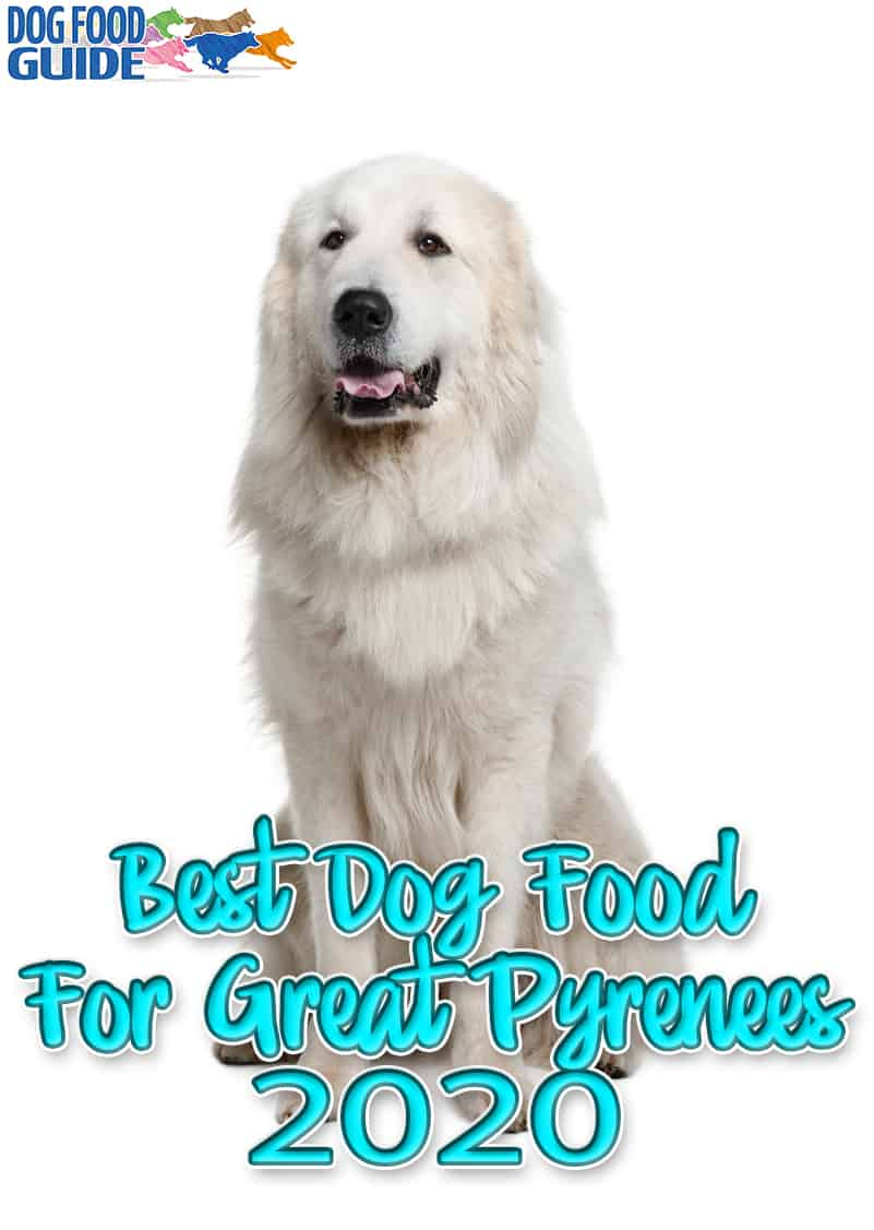 10 Best Dog Food For Great Pyrenees for