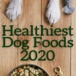 Healthiest Dog Food 2020: 20 Brands Offering Premium Products